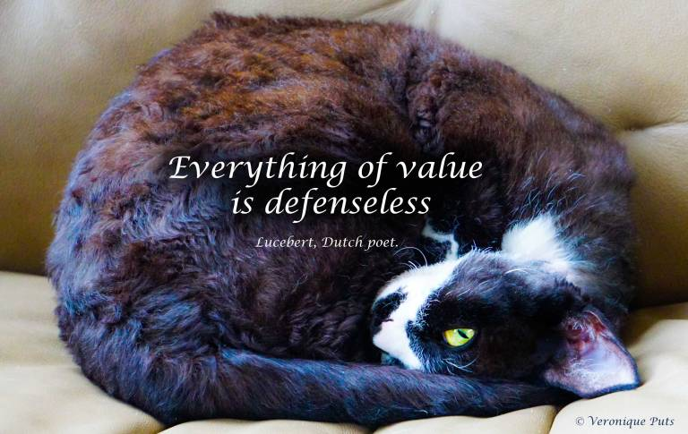 Everything of value...